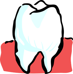 tooth-25594_640