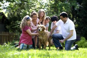 together-this-family-was-in-the-process-of-washing-their-labrador-retriever-outside-in-the-fresh-air